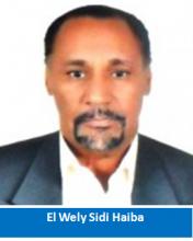 القطاع الخاص في موريتانيا:  رجال أعمال..  أم رجال إهمال؟