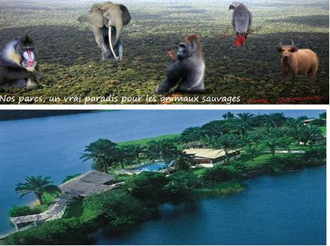 Gabon vert tour, des jeunes se mobilisent pour promouvoir le tourisme