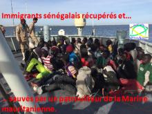 Sauvetage de dizaines d'immigrants clandestins sénégalais par la Marine mauritanienne